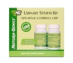 Urinary System Kit